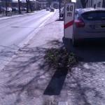Wucherungen Benutzungspflicht auf schlechten Radwegen
