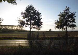 rueckweg_meer